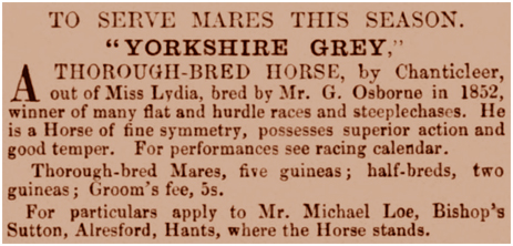 Yorkshire Grey thorough-bred horse advertisement for stud [1864]