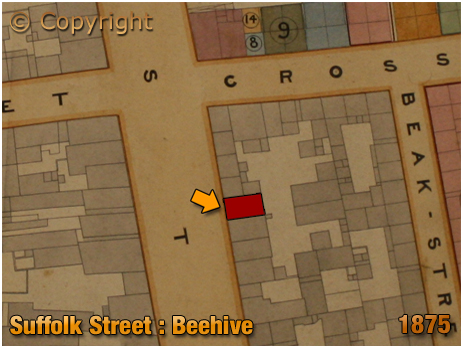 Birmingham : Gooch Estate Plan extract showing the location of the Beehive on Suffolk Street [1875]