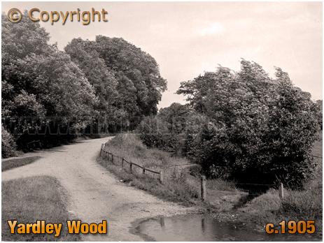 Birmingham : Rural Lane at Yardley Wood [c.1905]