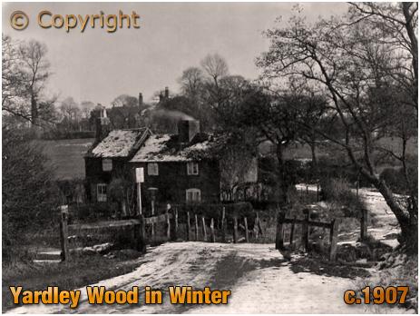 Birmingham : Yardley Wood in Winter [c.1907]