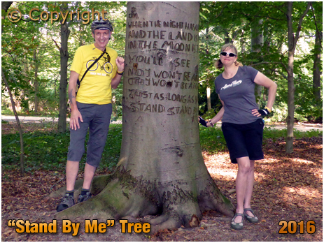"Berlin : ""Stand By Me"" Tree in Tiergarten Park [September 2016]"