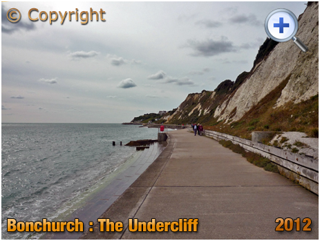 Isle of Wight : The Undercliff at Bonchurch [2012]