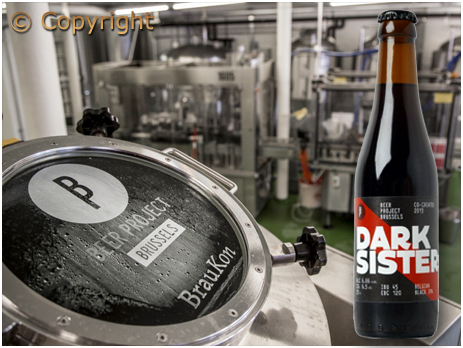 Dark Sister by Brussel Beer Project