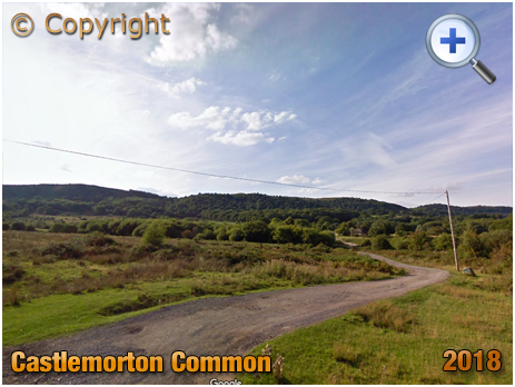 Castlemorton Common by Trevor Rickard [2008]
