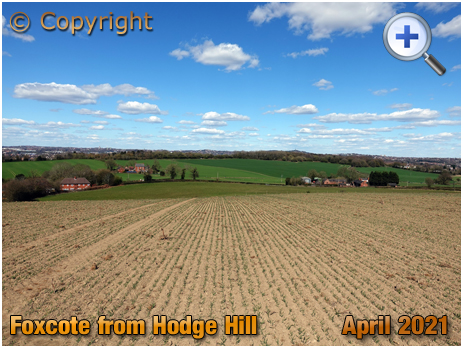 Cradley and Wollescote : Foxcote Woods from Hodge Hill [2021]