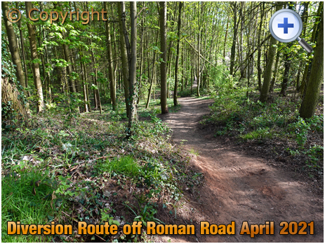 Iverley : Wooded Diversion off the Roman Road [2021]