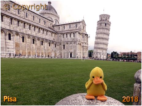 Pisa : Torre pendente di Pisa [2018]