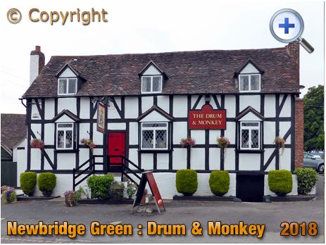 Newbridge Green : Drum and Monkey [2018]