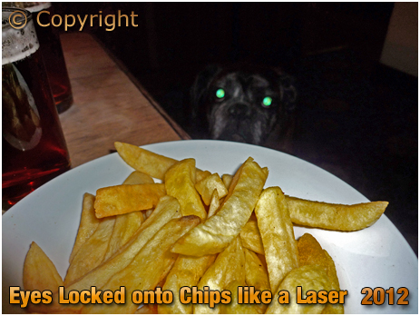 Rookley : Chips at The Chequers Inn [2012]