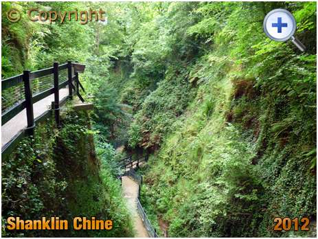 Isle of Wight : Shanklin Chine [2012]