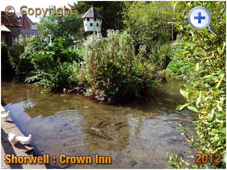 Isle of Wight : Trout Stream at the Crown Inn at Shorwell [2012]