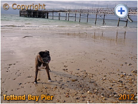 Isle of Wight : The Pier at Totland Bay [2012]