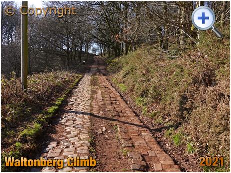 Waltonberg Cycle Climb [2021]