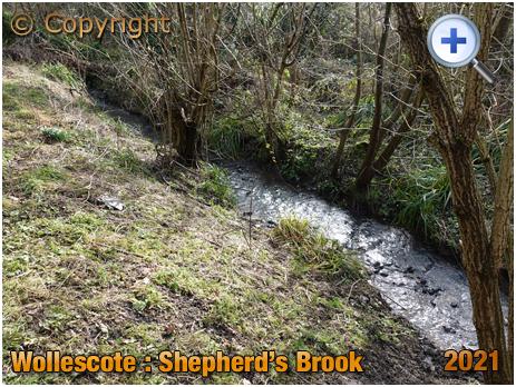 Wollescote : Shepherd's Brook [2021]
