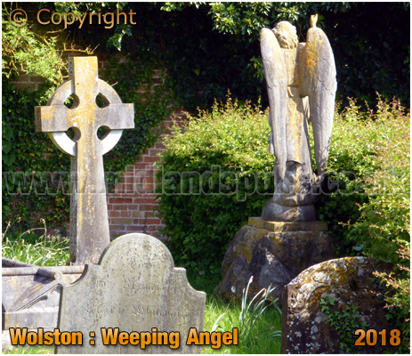 Wolston : Weeping Angel [2018]