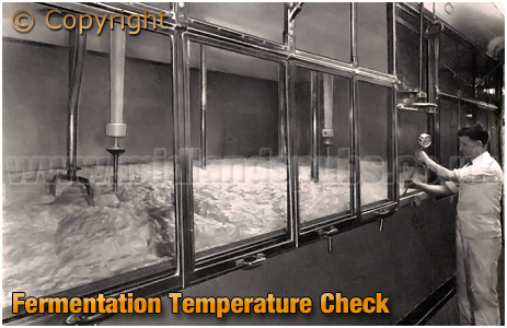Ansell's Brewery Fermentation Temperature Check