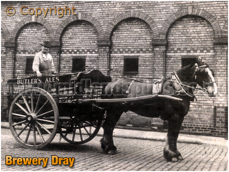 Brewery Dray of William Butler and Co. Ltd. of Springfield at Wolverhampton in Staffordshire