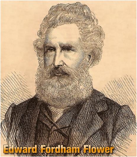 Edward Fordham Flower \1864]