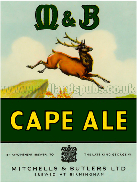 Mitchells's and Butler's Cape Ale