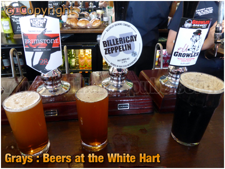 Grays : Guest Ales at the White Hart [2019]