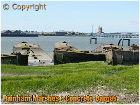 Rainham Marshes : Concrete Barges [2019]