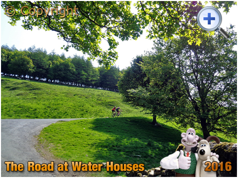 Water Houses : The Road near Home Farm and Malham Tarn in the Yorkshire Dales [2016]