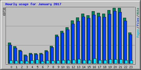 Hourly Website Statistics [January 2017]