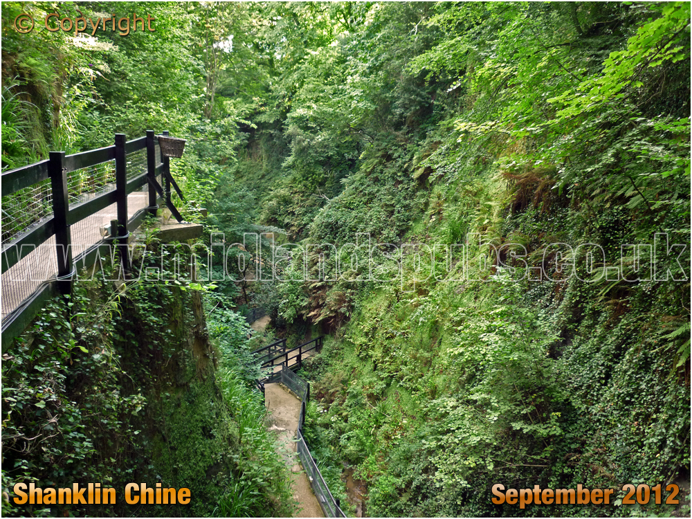 Shanklin Chine [2012]