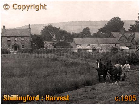 Shillingford : Farming Harvest [c.1905]