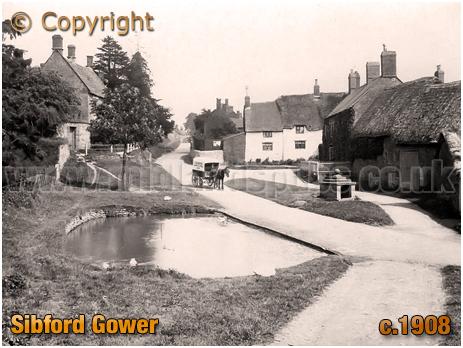Sibford Gower : Village Pond [c.1908]