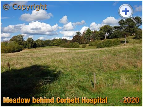 Amblecote : Meadow Fields behind Corbett Hospital [2020]