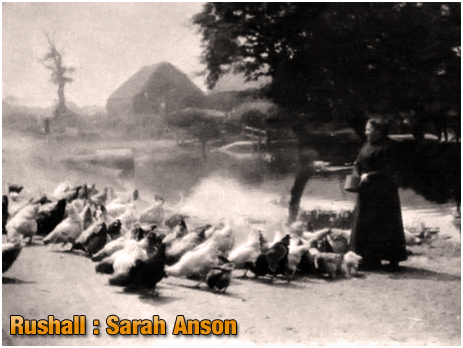 Rushall : Sarah Anson of the Manor Arms at Daw End [c.1920s]