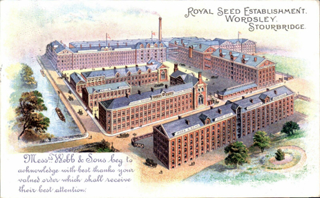 Wordsley : Webb's Royal Seed Establishment [c.1905]