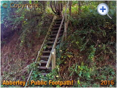 Public Footpath Steps in the Abberley Hills [2005]
