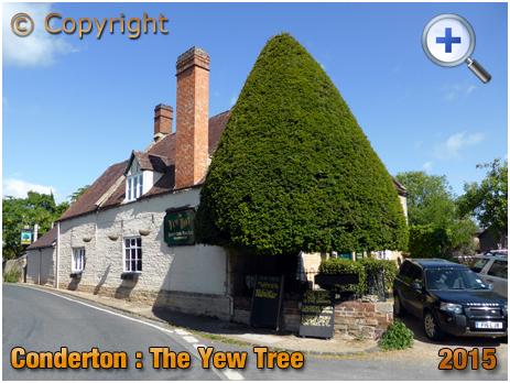 Conderton : Yew Tree [2015]