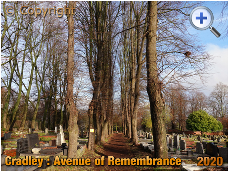 Cradley : Avenue of Remembrance [2020]