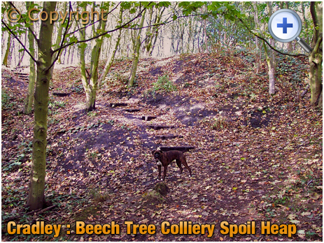 Cradley : Spoil Heap of the Beech Tree Colliery [2002]