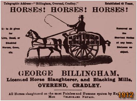 George Billingham : Licensed Horse Slaughterer and Blacking Mills at Overend in Cradley [1912]