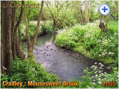 Cradley : Confluence of Mousesweet Brook and River Stour at Cradley Forge [2005]