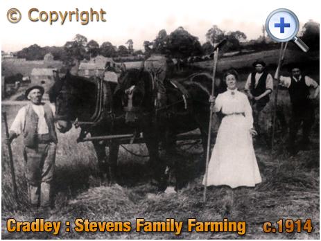 Cradley : The Stevens family of Park Farm [c.1914]