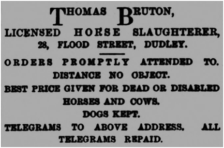 Dudley : Advertisement for Thomas Bruton of Flood Street [1883]
