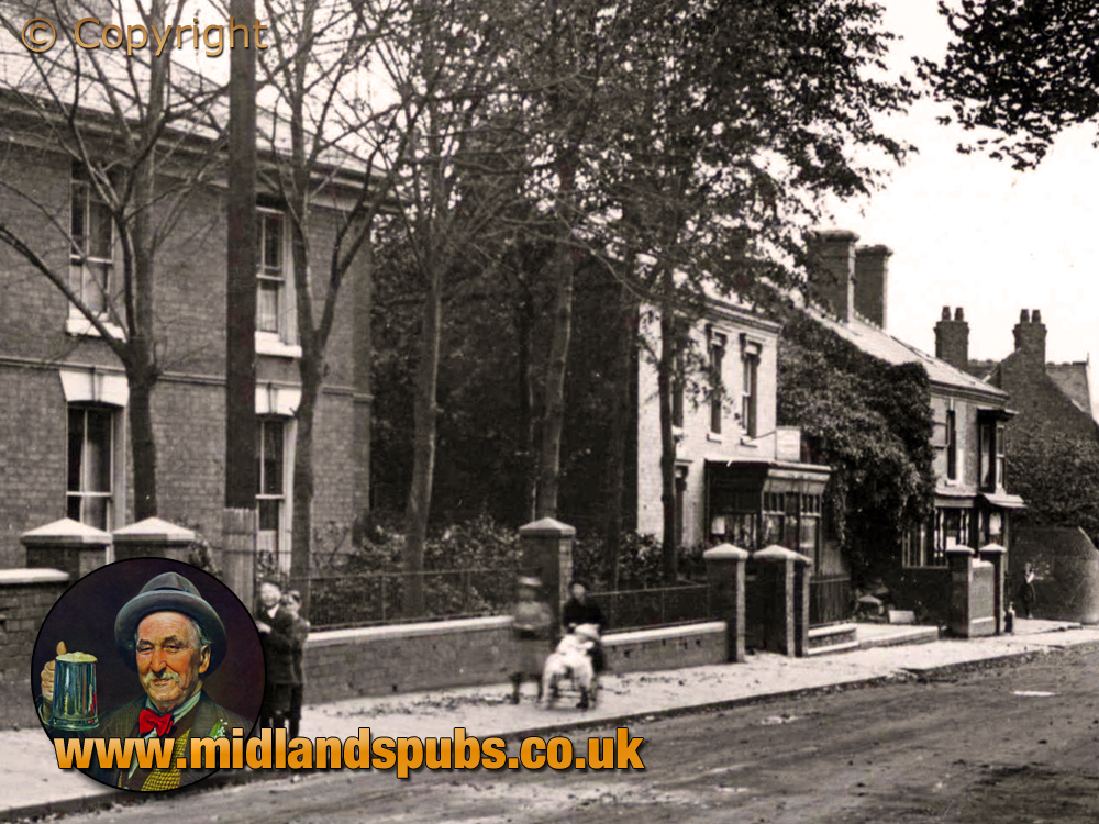 Cradley : Aston Villas on Colley Gate [c.1914]