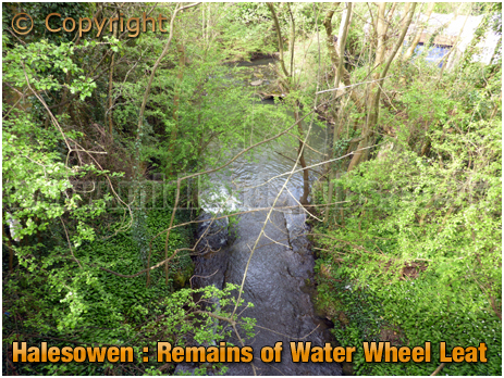 Halesowen : Remains of a Mill Leat at The Furnace [2019]