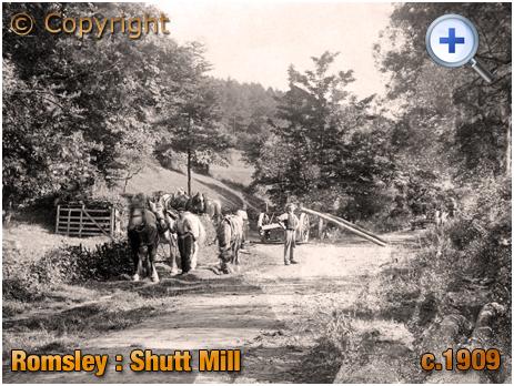 Romsley : Shutt Mill [c.1909]