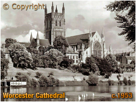 Worcester : Cathedral from the River Severn [c.1953]