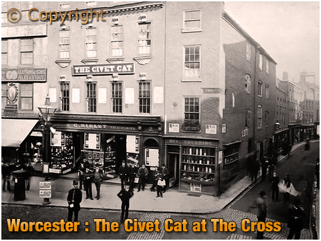 Worcester : The Civet Cat at The Cross [c.1890]