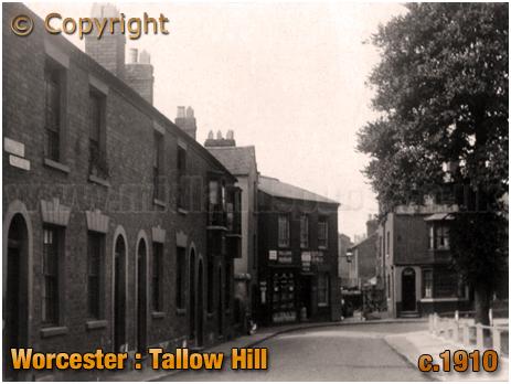 Worcester : Tallow Hill [c.1910]